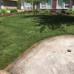 new sod yard