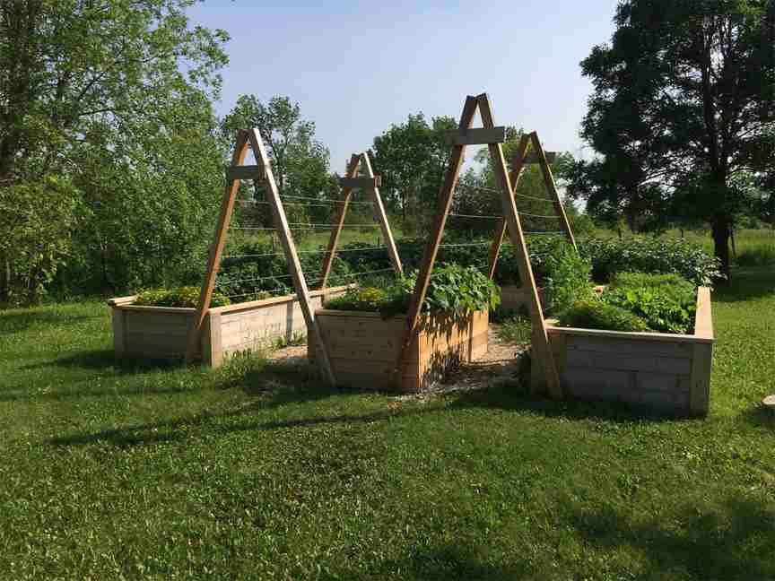 Cedar raised gardens with trellis