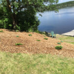 riverbank stabilization Junipers and mulch